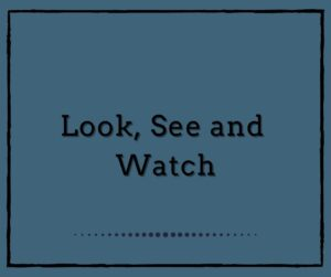 Look, See and Watch